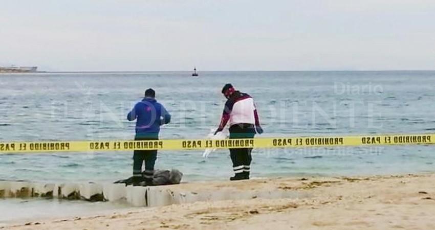 Localizan un hombre sin vida flotando frente al Hotel Perla de La Paz