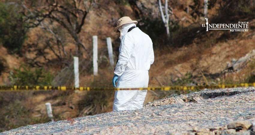 Vive Los Cabos fin de semana infernal; cinco ejecutados