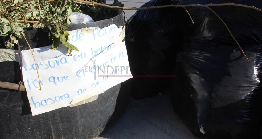 Proponen empresarios campañas de limpieza en colonias de CSL