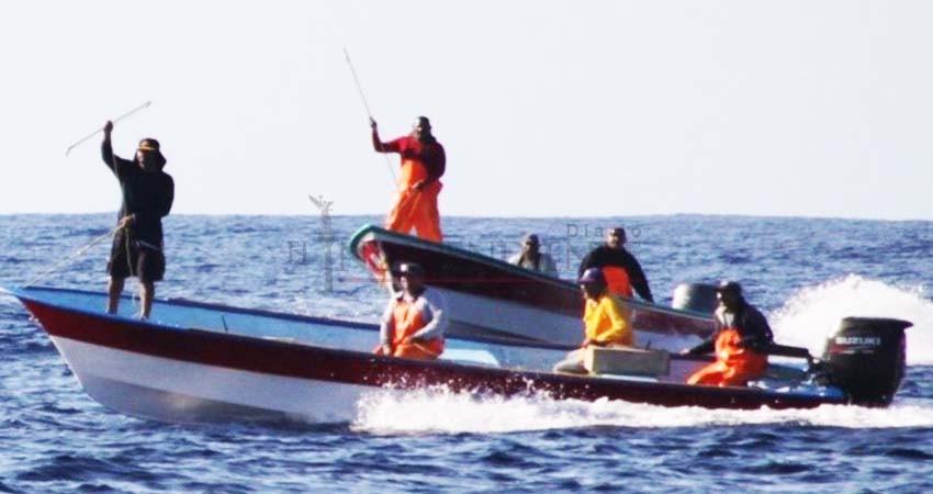Detienen embarcación que pescaba Marlín con arpones en Todos Santos