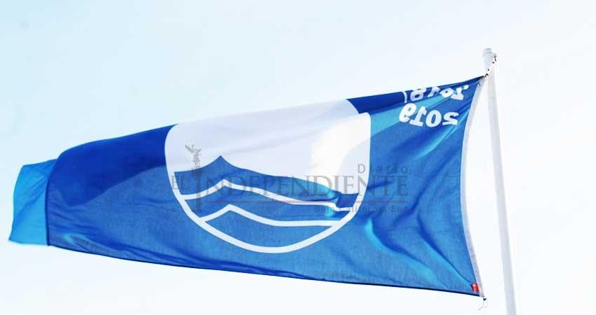 Retiran bandera Blue Flag a Hotel Riu por destrucción de nido de tortugas