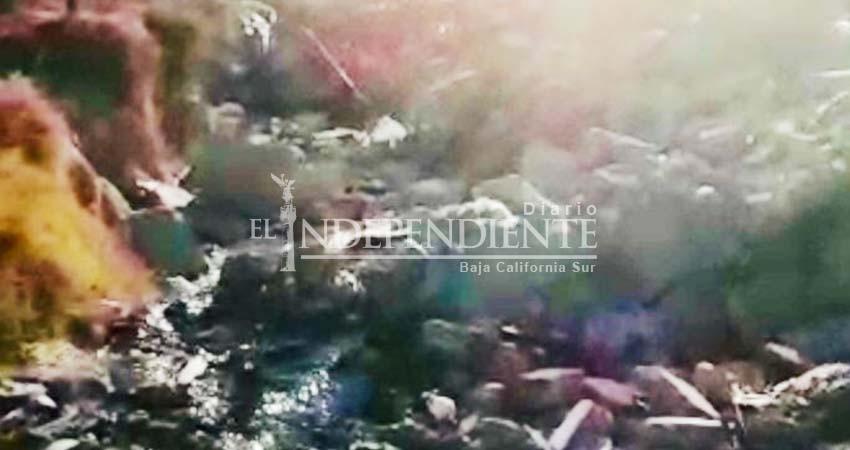 Peligra salud pública por derrames de aguas negras en Cabo San Lucas