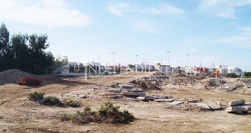 """Sirve manglar del Conchalito de La Paz como tiradero y pista """"motocross"""""""