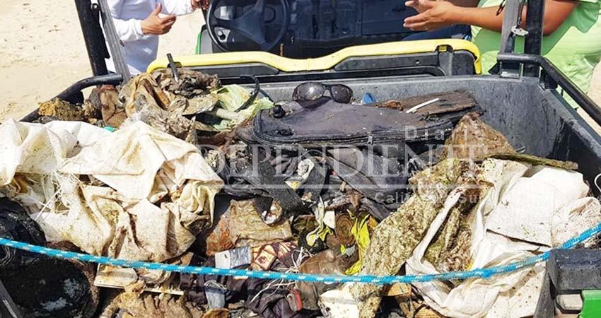 Zofemat Los Cabos realiza limpia para evitar que basura llegue al mar