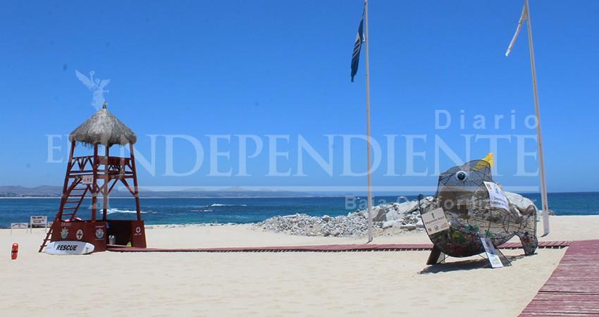 Zofemat busca certificar ante el INMC, playas Las Viudas y Acapulquito
