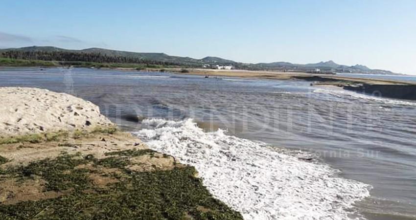 Denuncian a funcionarios por incompetencia al proteger el Estero de San José