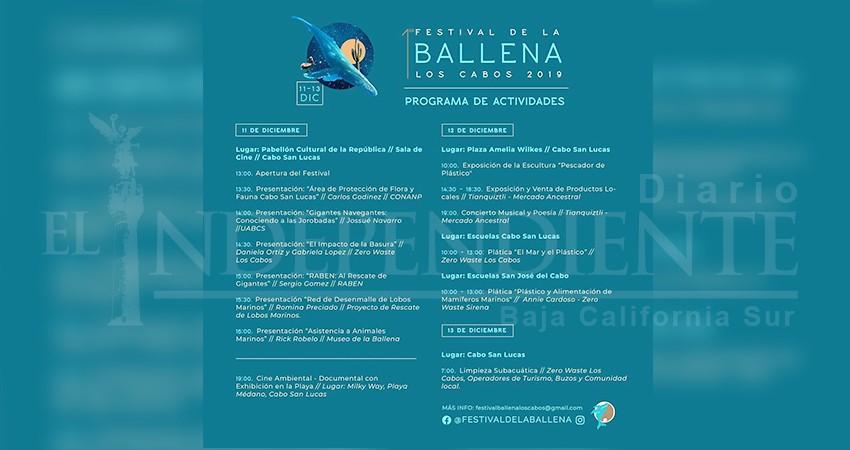 Conferencias, cine y limpieza subacuática durante el Festival de la Ballena 2019