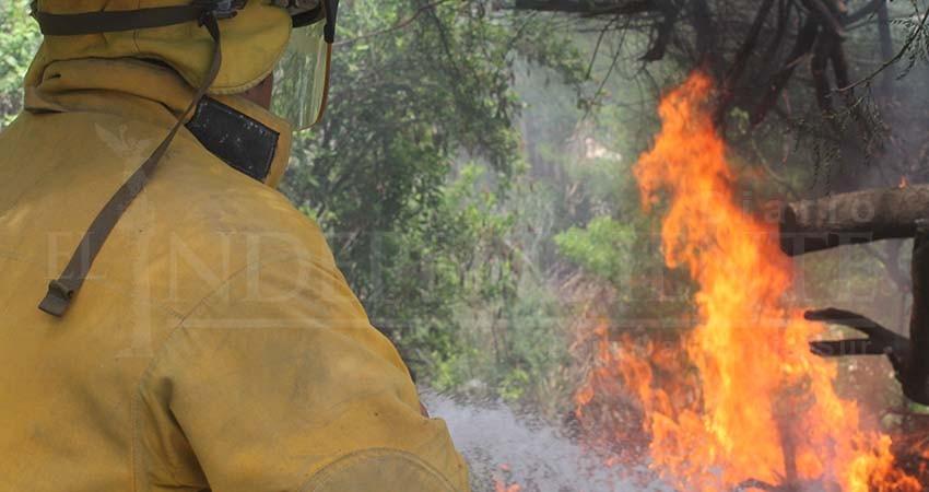 Tras años de lucha, bomberos de Los Cabos logran aumento salarial a partir del 2020