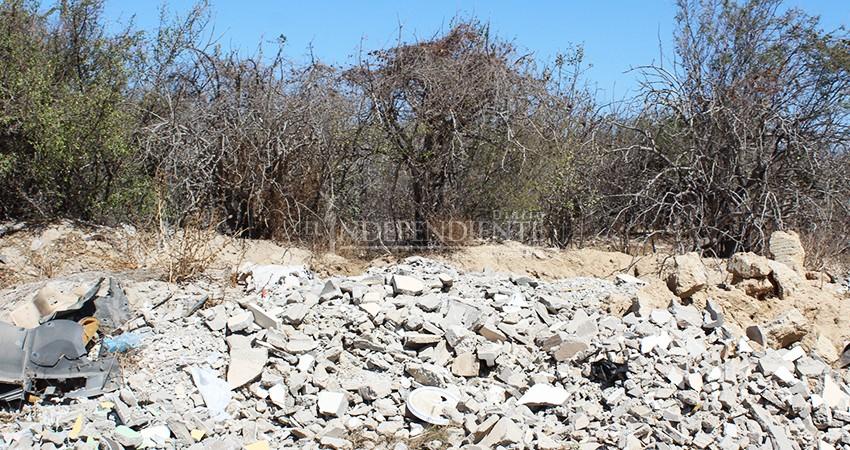 Algunas empresas son responsables de impactos ambientales en playas por arrastres de residuos por lluvias: Zofemat
