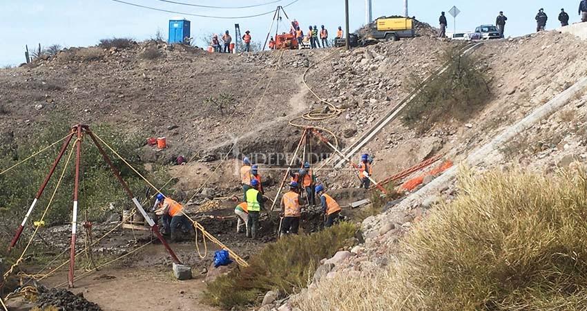 Costa Salvaje formaliza denuncia por daño a manglares en la carretera a Pichilingue