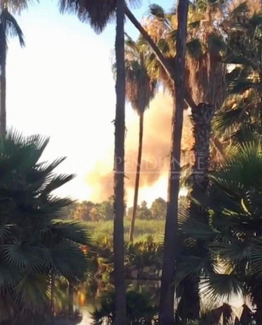 Se incendia el estero de San José del Cabo