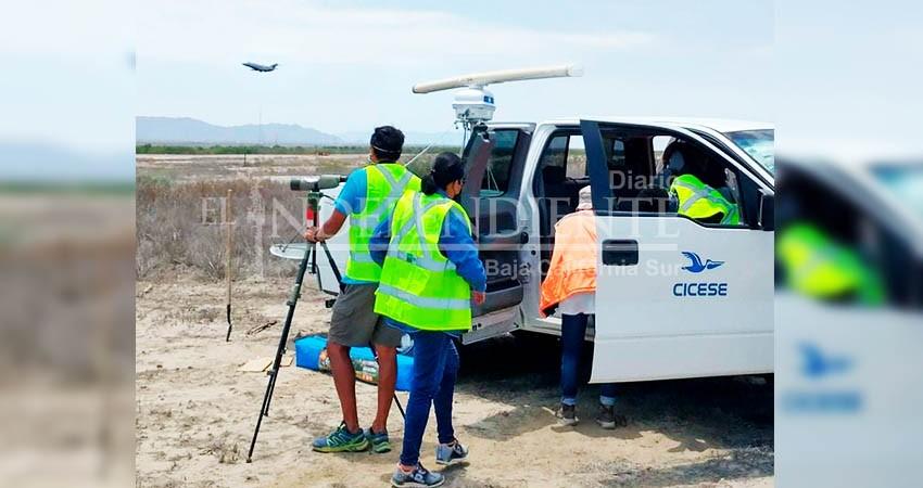 Colaboran CICESE La Paz y UABCS en diferentes proyectos de aeroecología marina